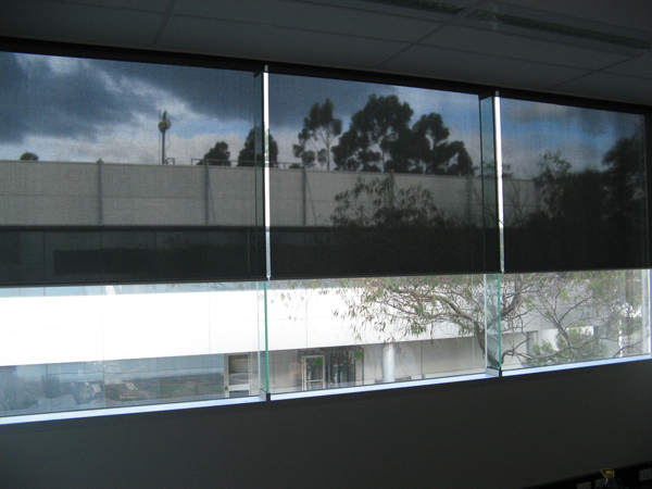 Sunscreen Roller Blinds 01